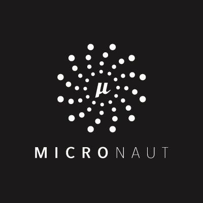 Como foi o meetup sobre Micronaut